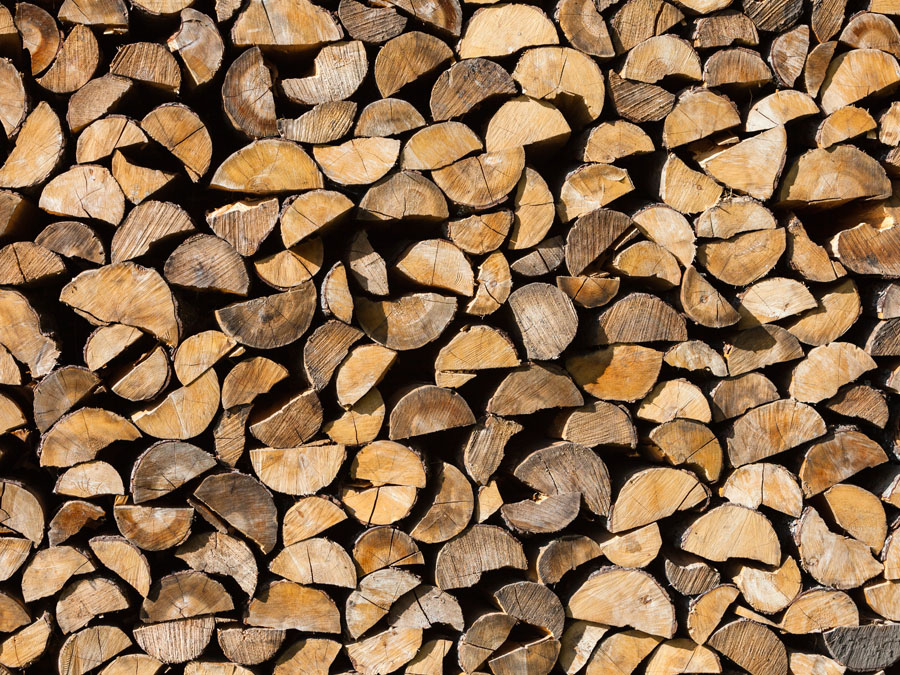 Sustainable Logs for sale